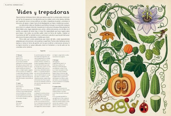 Botanicum-Impedimenta5
